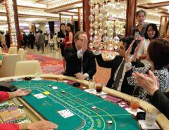 judi kartu di casino online